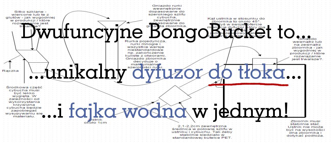 BongoBucket Baner główny